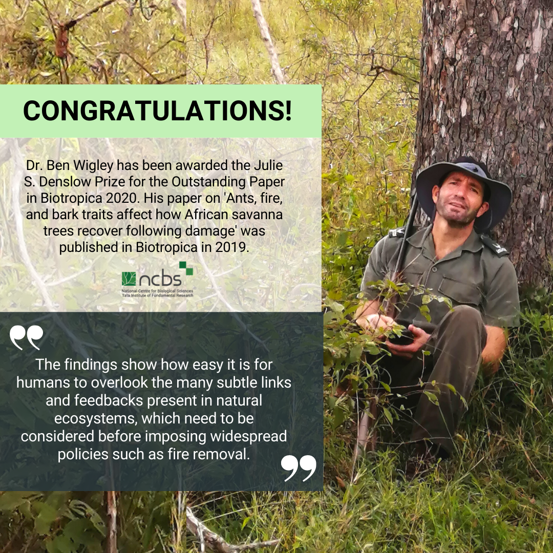 Congratulations! Dr. Ben Wigley awarded Julie S. Denslow Prize for the Outstanding Paper in Biotropica 2020