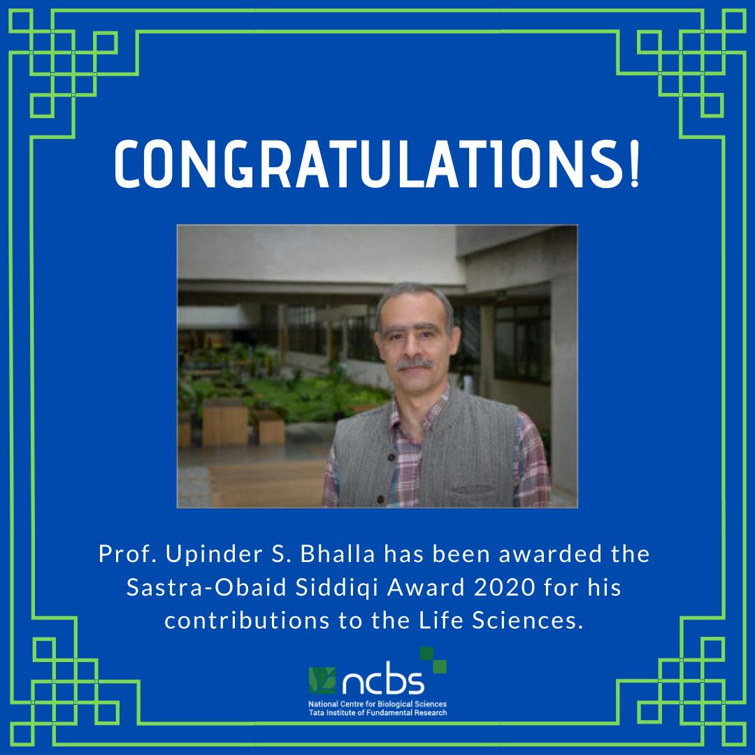 Congratulations! Prof. Upi Bhalla awarded Sastra-Obaid Siddiqi Award 2020