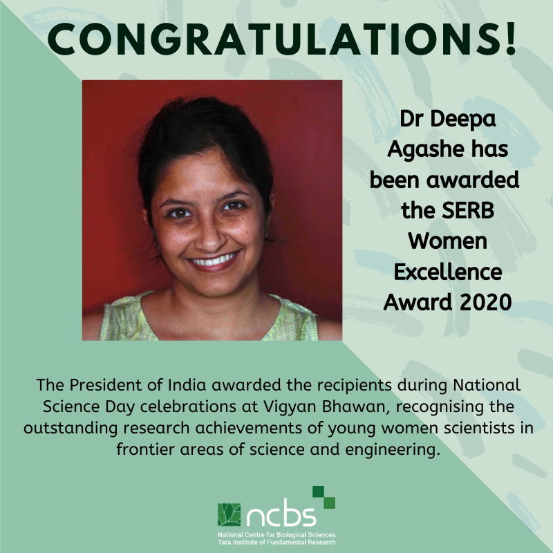 Congratulations! Dr Deepa Agashe Awarded SERB Women Excellence Award 2020