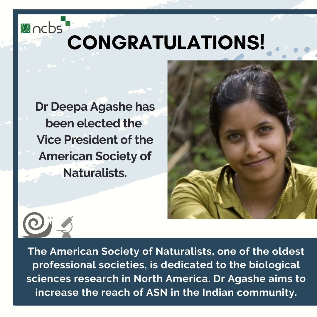 Congratulations! Dr. Deepa Agashe elected Vice President of the American Society of Naturalists