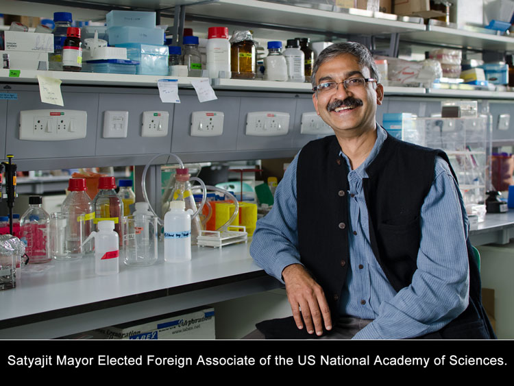 Satyajit Mayor Elected Foreign Associate of the US National Academy of Sciences.