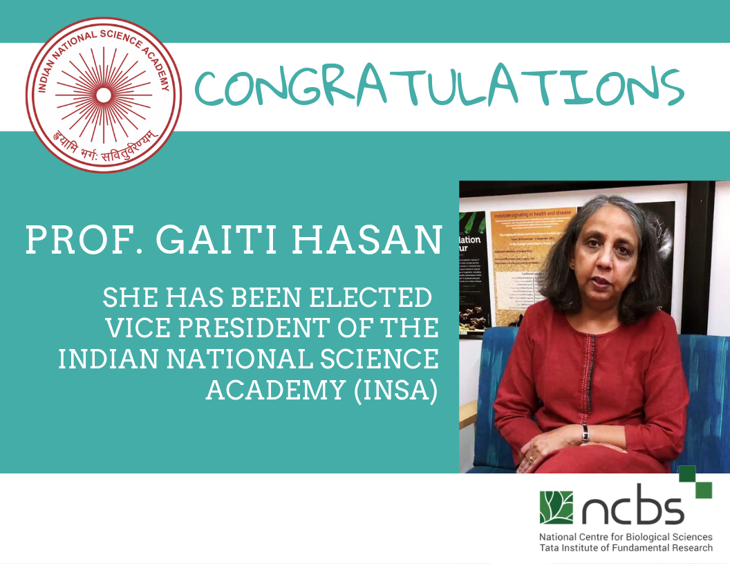 Congratulations! Prof. Gaiti Hasan elected Vice President of INSA