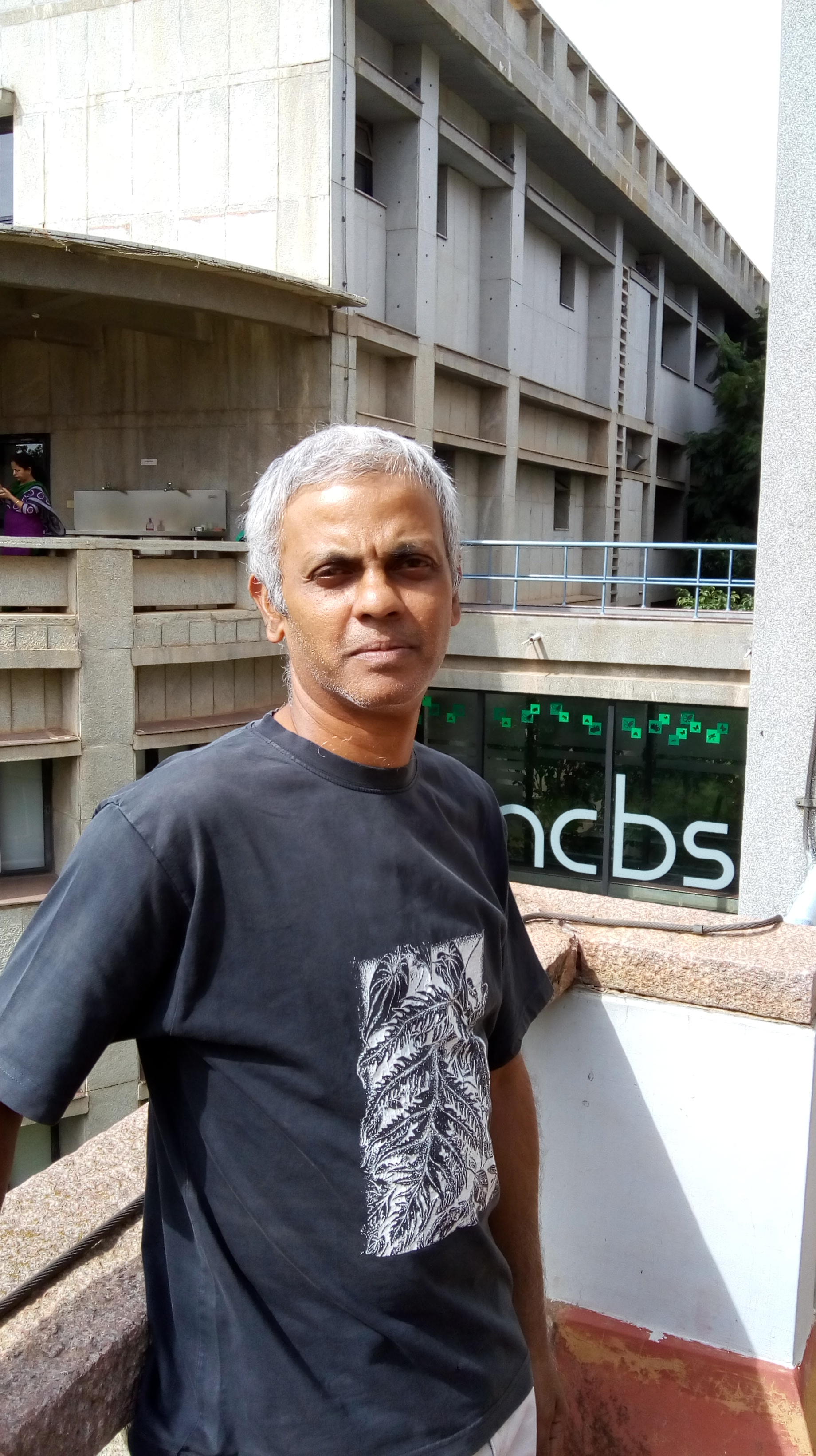 Mahesh Sankaran for this year's Harper Review