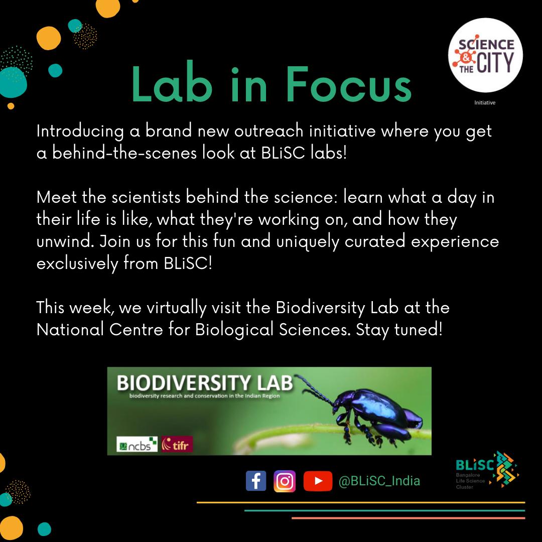 Lab in Focus: Biodiversity Lab