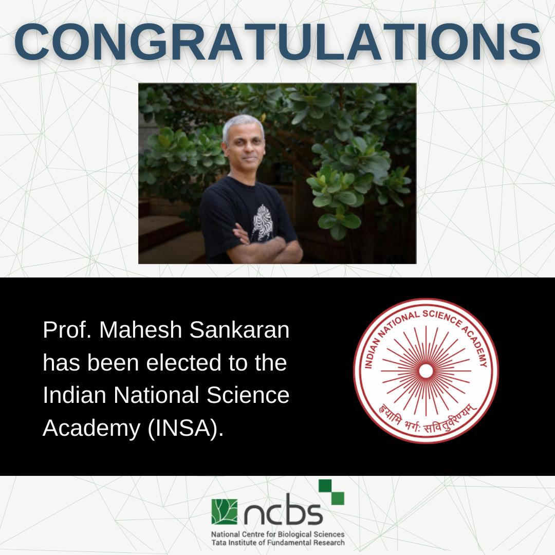 Congratulations! Prof. Mahesh Sankaran elected fellow of INSA