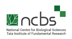 Retraction of paper from Arati Ramesh Lab at NCBS