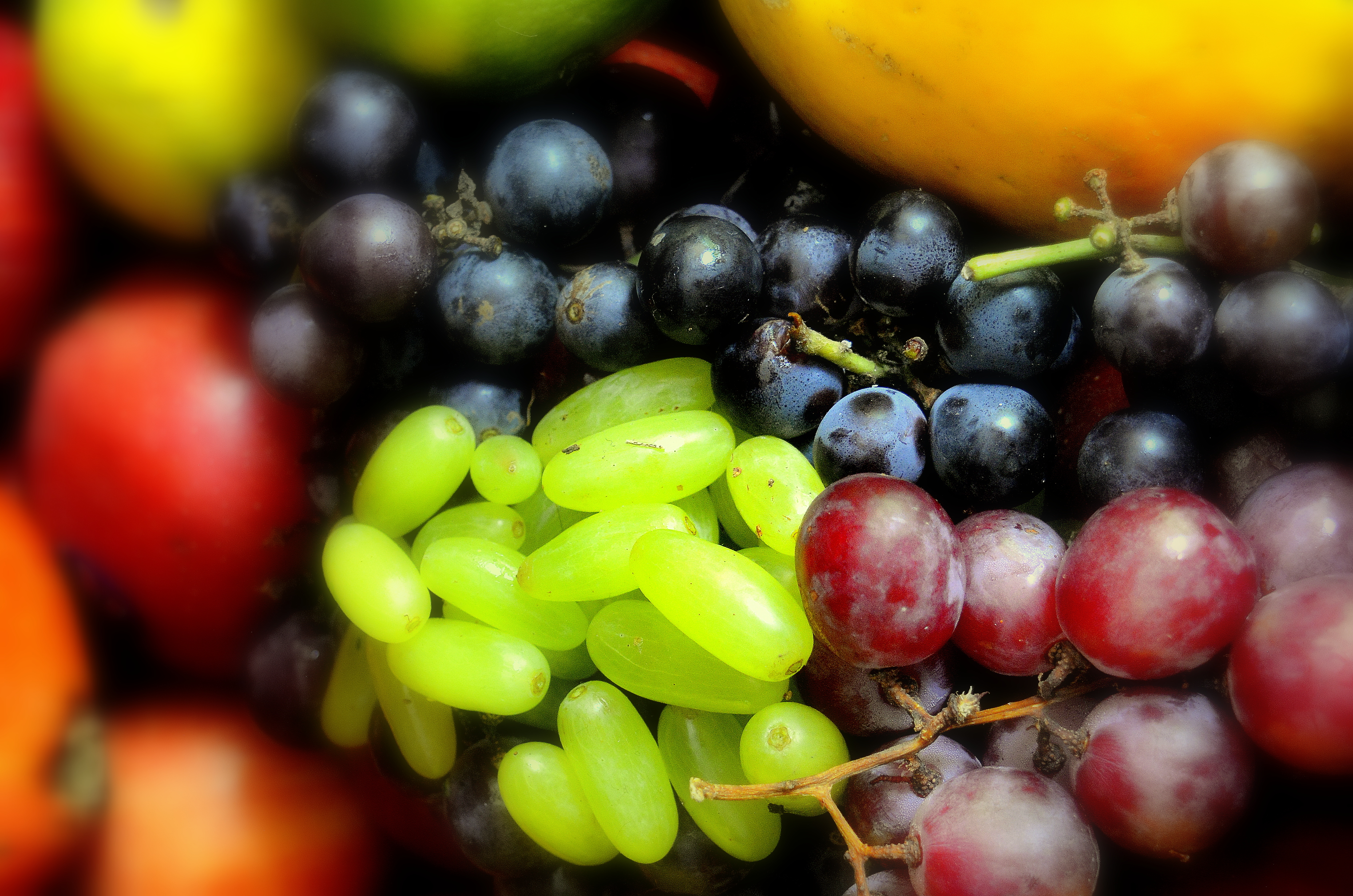 Molecular switches that regulate fruit colour and flavonol accumulation in grapes