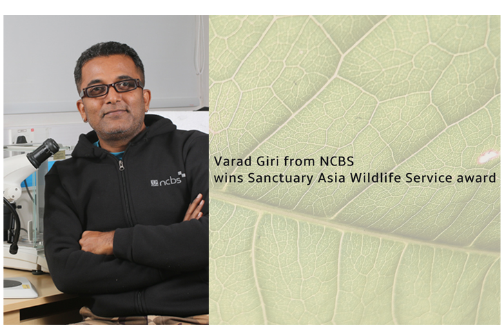 Varad Giri from NCBS wins Sanctuary Asia Wildlife Service award